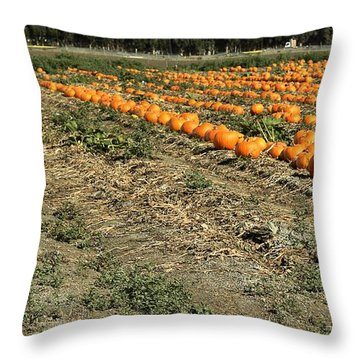 Throw Pillow featuring the photograph Fencing The Pumpkin Patch by Michael Gordon