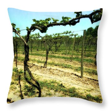 Fenn Valley Vineyards Throw Pillow by Michelle Calkins