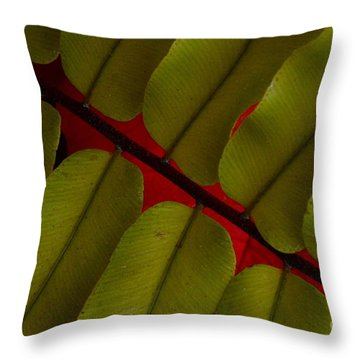 Fern At Christmas Throw Pillow by Tim Good