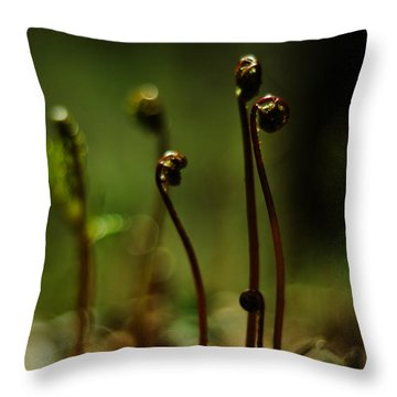 Fern Emergent Throw Pillow by Rebecca Sherman