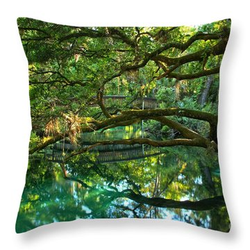 Fern Hammock Throw Pillow