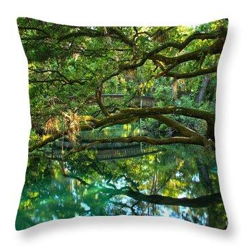 Fern Hammock Throw Pillow