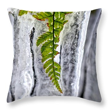Fern In Ice Throw Pillow by Dan Friend