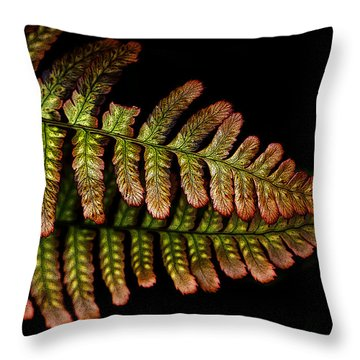 Throw Pillow featuring the photograph Fern by Sonya Lang
