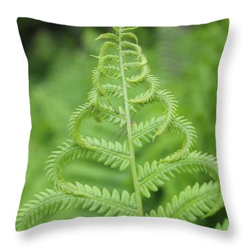 Fern Throw Pillow by Tiffany Erdman