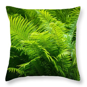 Ferns 1 Throw Pillow