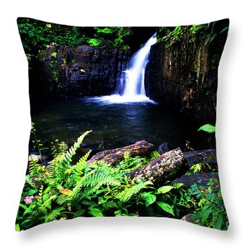 Ferns Flowers And Waterfall Throw Pillow by Thomas R Fletcher