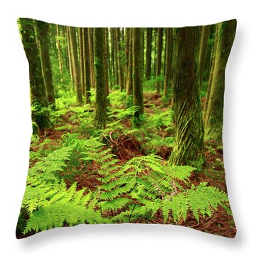 Ferns In The Forest Throw Pillow by Gaspar Avila