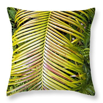 Throw Pillow featuring the photograph Ferns by Kate Brown