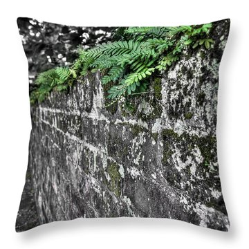 Ferns On Old Brick Wall Throw Pillow