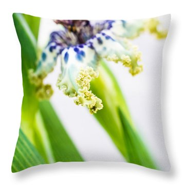 Ferraria Crispa Throw Pillow by Priya Ghose