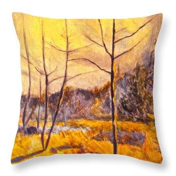 Ferrum Throw Pillow by Kendall Kessler