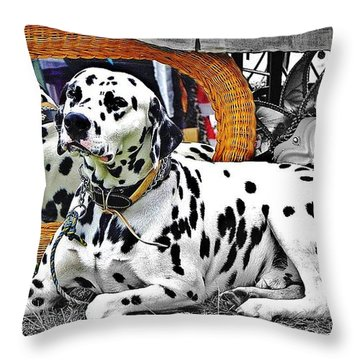 Festival Dog Throw Pillow by Blair Stuart