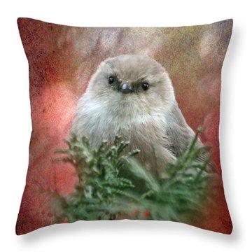 Festive Bushtit Throw Pillow by Angie Vogel