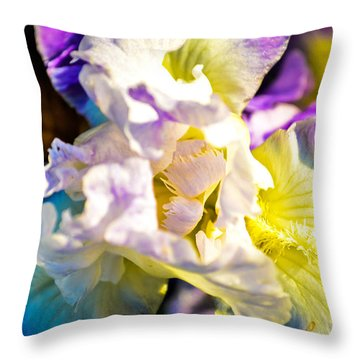 Fickle Iris  Throw Pillow