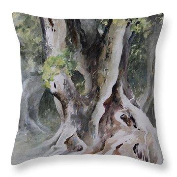 Ficus Aurea Throw Pillow by Rachel Christine Nowicki