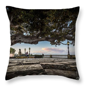 Ficus Magnonioide In The Alameda De Apodaca Cadiz Spain Throw Pillow
