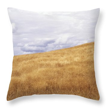 Field And Sky Near Rock Creek, South Throw Pillow by Bert Klassen