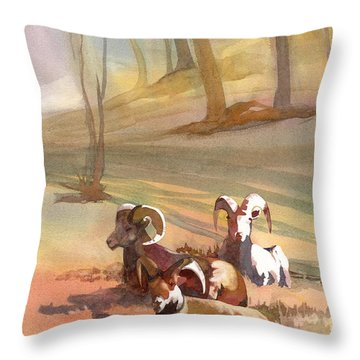 Field Day Throw Pillow