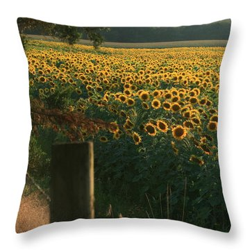 Field Dreams No.2 Throw Pillow by Neal Eslinger