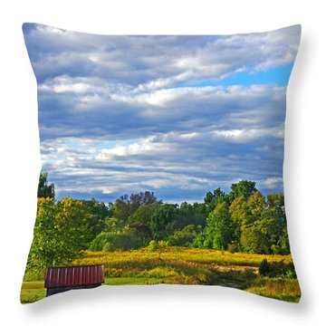Field House Throw Pillow