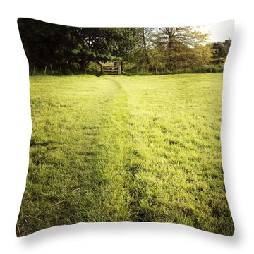 Field Throw Pillow by Les Cunliffe