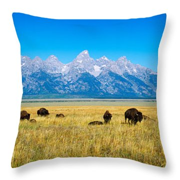 Field Of Bison With Mountains Throw Pillow