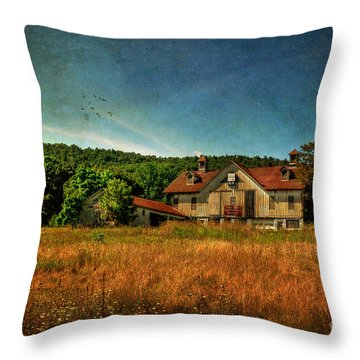 Field Of Broken Dreams Throw Pillow by Lois Bryan