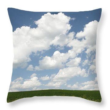 Field Of Dreams Throw Pillow by Elvira Butler