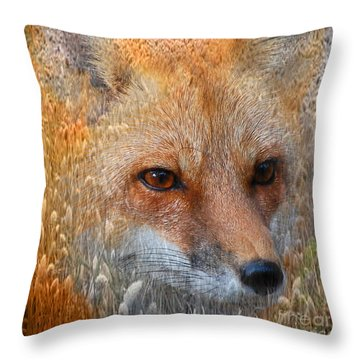 Field Of Dreams Fox Pillow Throw Pillow