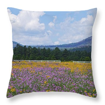 Field Of Dreams Throw Pillow by Tom Kelly
