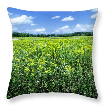Field Of Flowers Sky Of Clouds Throw Pillow