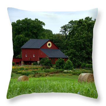 Throw Pillow featuring the photograph Field Of Flowers Farm by Cathy Shiflett