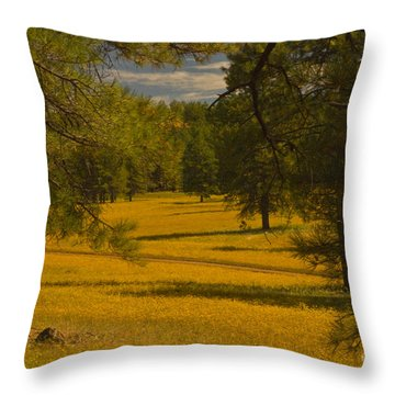 Field Of Flowers Throw Pillow by Rod Wiens