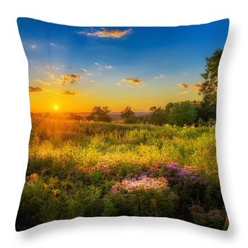 Field Of Flowers Sunset Throw Pillow by Mark Goodman