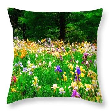Field Of Iris Throw Pillow