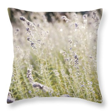 Field Of Lavender At Clos Lachance Vineyard In Morgan Hill Ca Throw Pillow