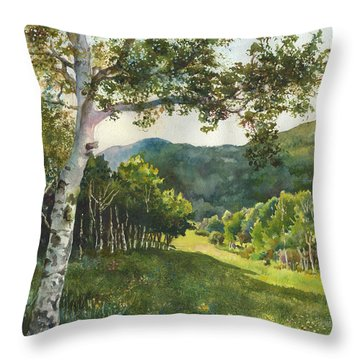 Field Of Light At Caribou Ranch Throw Pillow