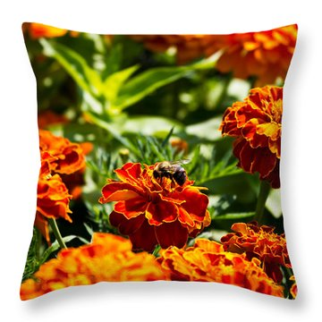 Field Of Marigolds Throw Pillow