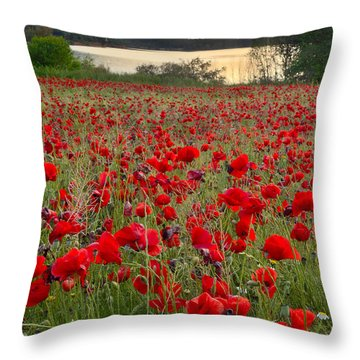 Field Of Poppies At The Lake Throw Pillow by Guido Montanes Castillo