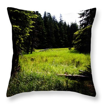 Field Of Possibilities Throw Pillow