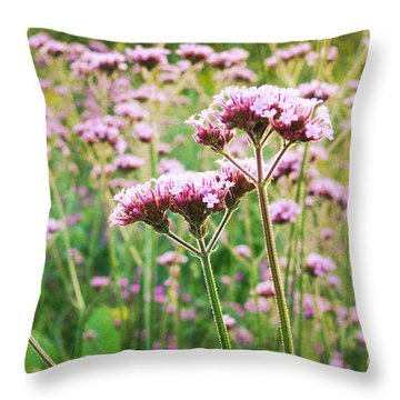 Field Of Purple Tops Throw Pillow