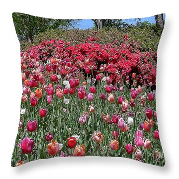Throw Pillow featuring the photograph Field Of Tulips And Azaleas by Merton Allen
