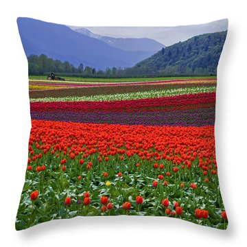 Field Of Tulips Throw Pillow by Jordan Blackstone