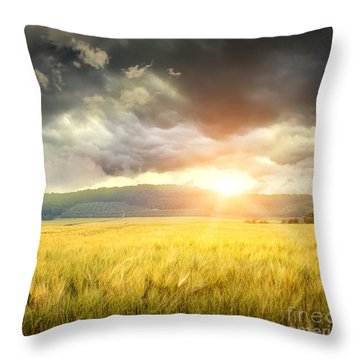 Field Of Wheat With Ominous Clouds  Throw Pillow by Sandra Cunningham