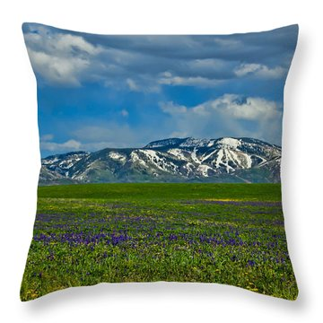 Field Of Wildflowers Throw Pillow by Don Schwartz