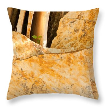 Throw Pillow featuring the photograph Field Stones by Lena Wilhite