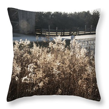 Field With Barn In The Background Throw Pillow by Birgit Tyrrell
