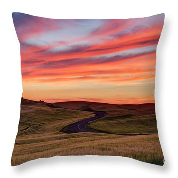 Fields And Dreams Throw Pillow