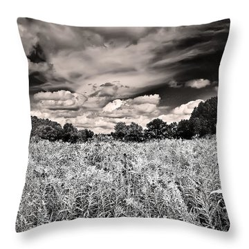 Fields Of Gold And Clouds Throw Pillow